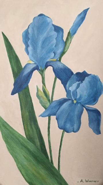 med Iris painting