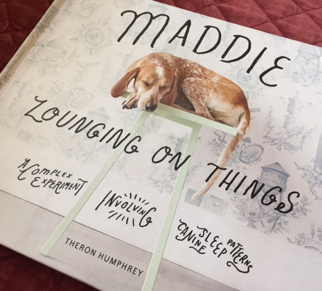 Maddie book cover